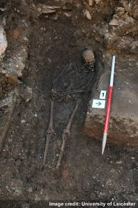 The Richard III skeleton in situ (image University of Leicester).