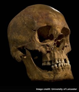 The excavated skull identified as Richard III (image University of Leicester).