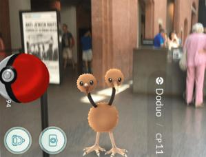 This DoDuo was captured at the Holocaust Museum in Washington, D.C., which has subsequently asked the game be excluded from the site.